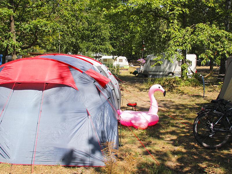 Turawik Camping - Jezioro Srednie - Turawa